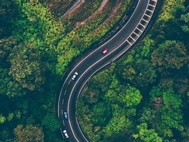 aerial view of cars on the road surrounded by lush green trees